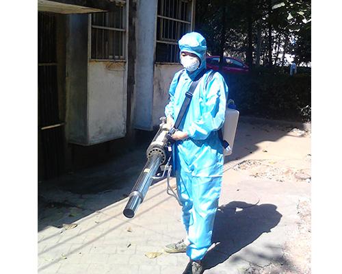 蛀虫防治服务