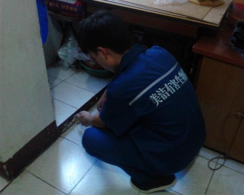 长沙老鼠防治服务