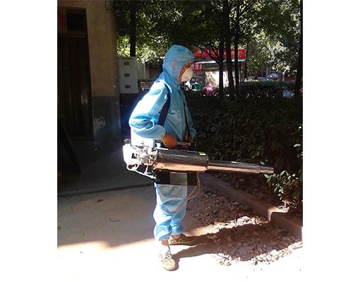 长沙白蚁防治服务
