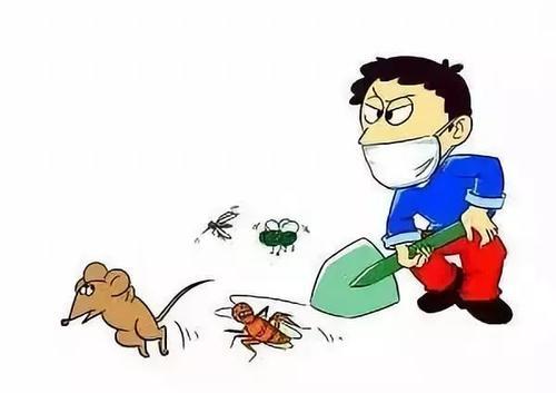 长沙白蚁防治
