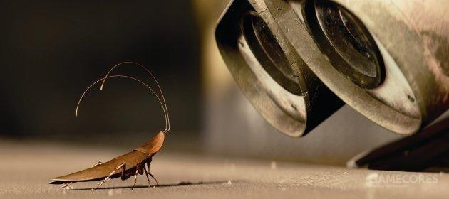 湖南蟑螂防治服务